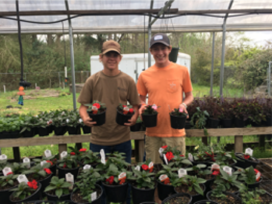 Spring Plant Sale Ad